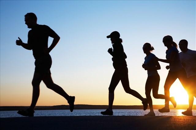 運動(トレーニング)の重要性